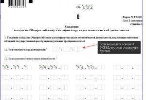 Заполнение кодов на дополнительные виды деятельности в ОКВЭД